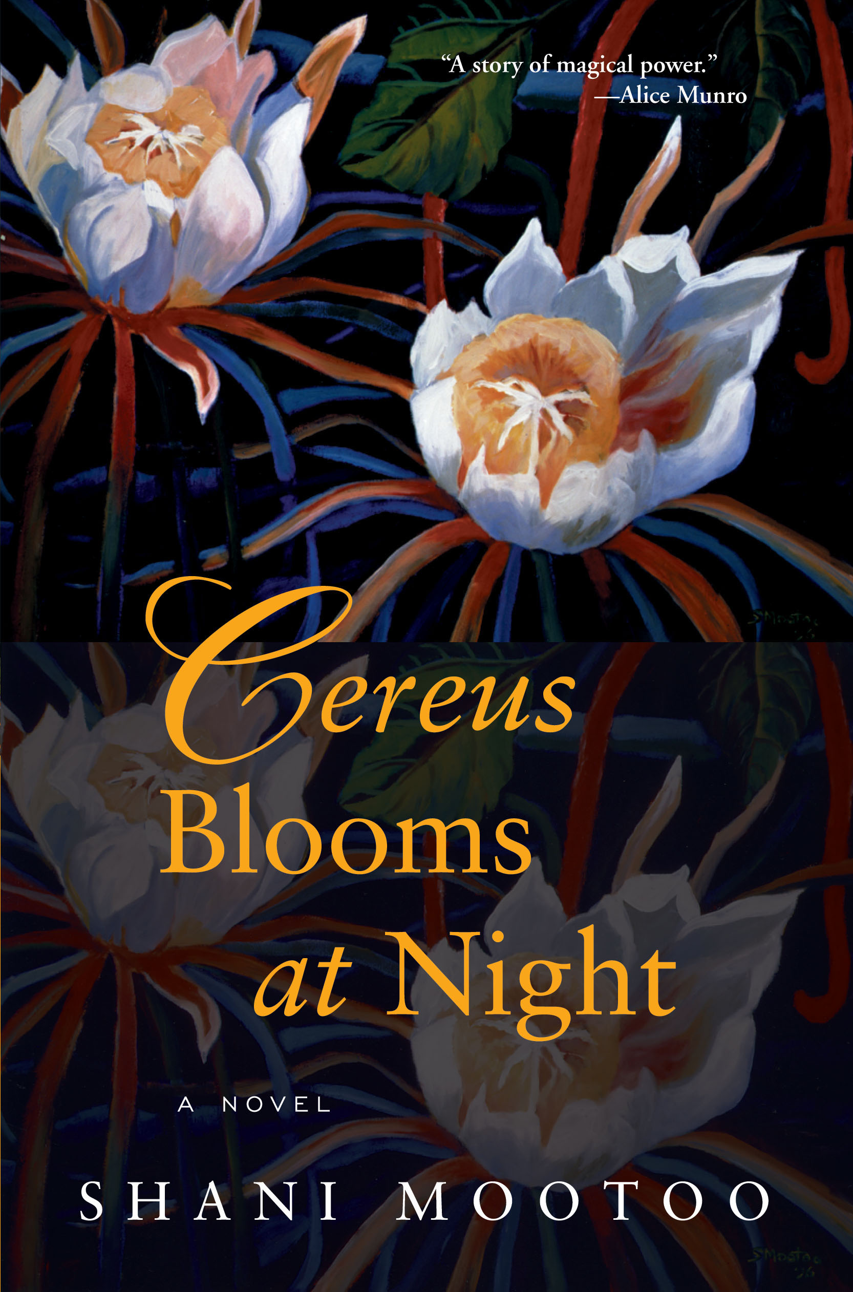 Cereus Blooms At Night Grove Atlantic