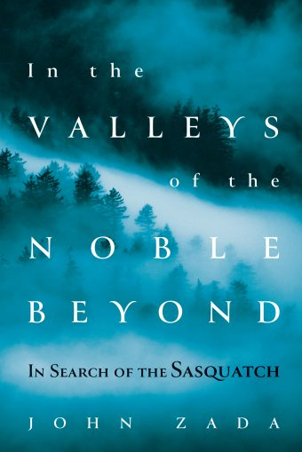 Cover of In the Valleys of the Noble Beyond