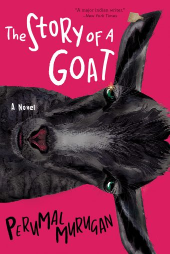 The Story Of A Goat Grove Atlantic